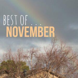 Best of November | healthynibblesandbits.com