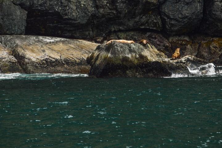 Kenai Fjords, Alaska | healthynibblesandbits.com