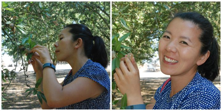 Almond Orchard Experience #sponsored | healthynibblesandbits.com