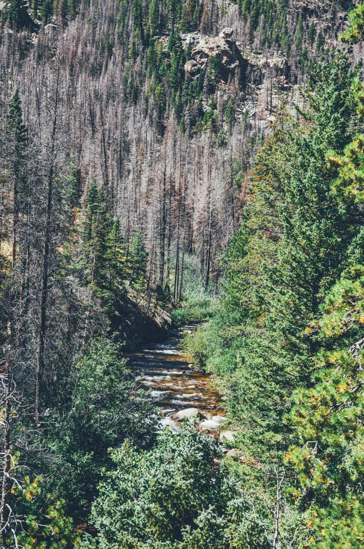 Rocky Mountain National Park | healthynibblesandbits.com