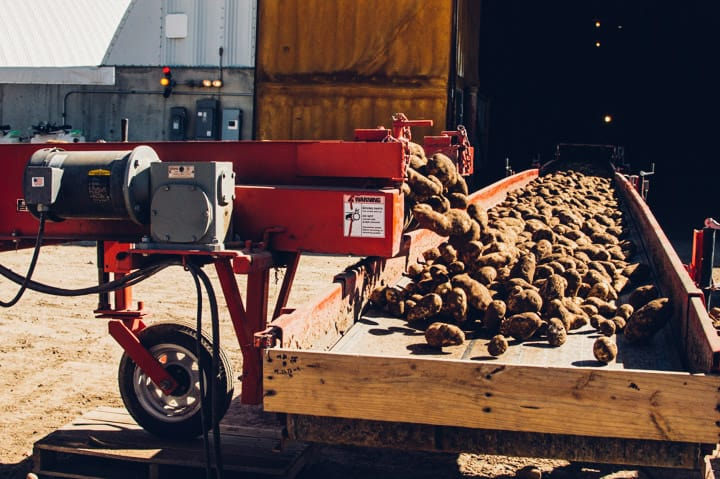 Idaho Potato Harvest | healthynibblesandbits.com