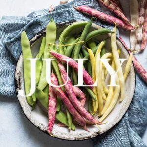 Find out what's in season in this July Produce Guide! You'll find tips on how to pick and store the produce as well as recipe ideas!