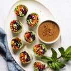 Vegetable Spring Rolls with Peanut Sauce - a healthy light appetizer or meal!