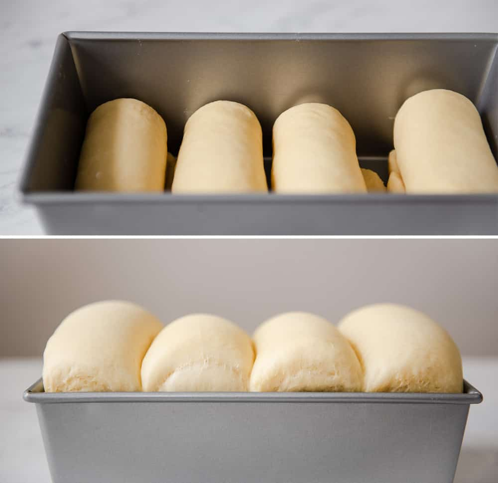 Risen Bread Loaves