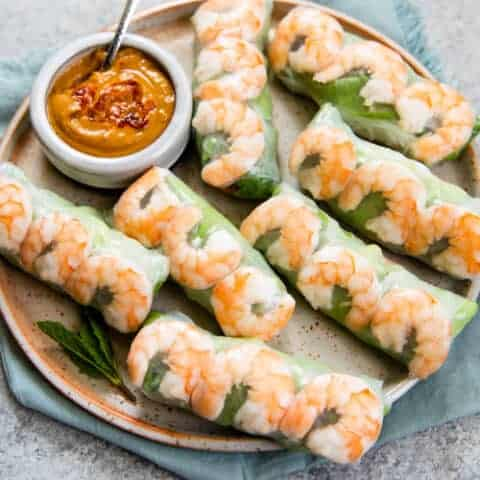 Fresh Vietnamese Spring Rolls With Video With Dipping Sauce Healthy Nibbles