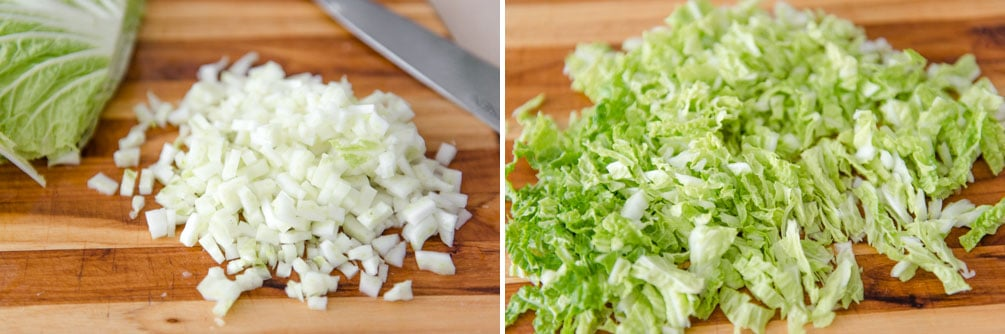 Sliced and diced napa cabbage